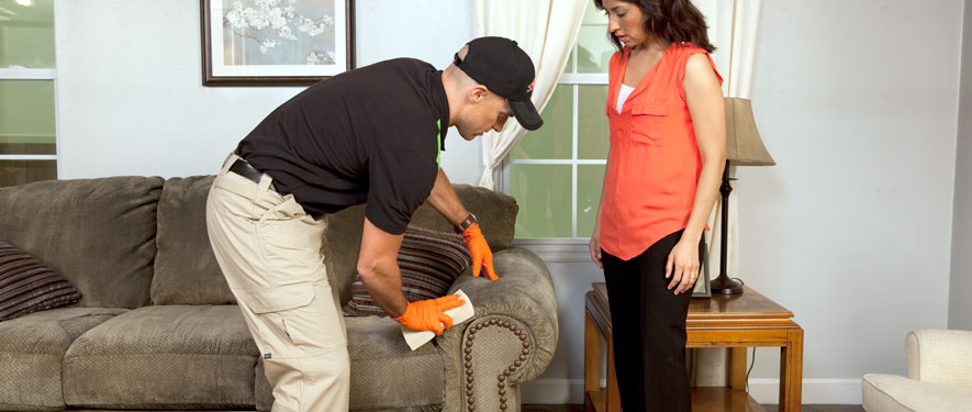 Lewisburg, PA carpet upholstery cleaning